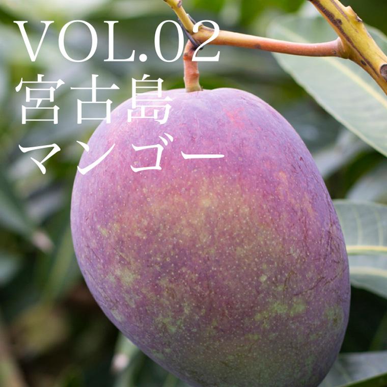 VOL.02 宮古島マンゴー